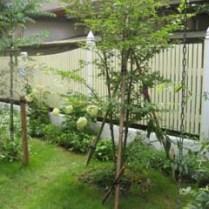 木製フェンスもオリジナルです