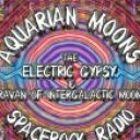 Profile picture of ElectricGypsy