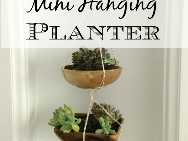 DIY Mini Hanging Planter