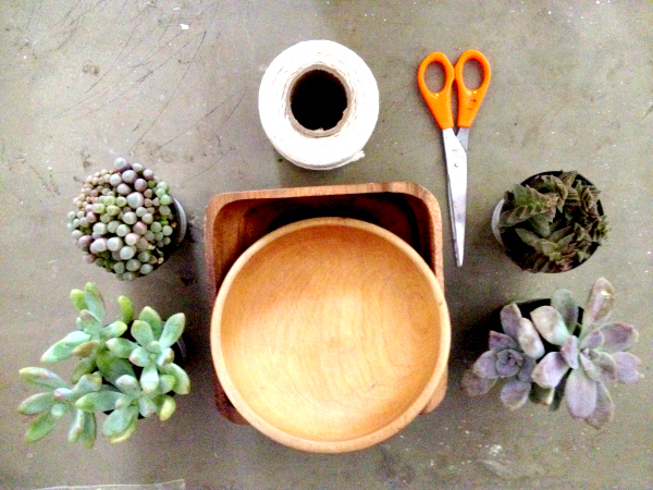 Mini Haning Planter supplies