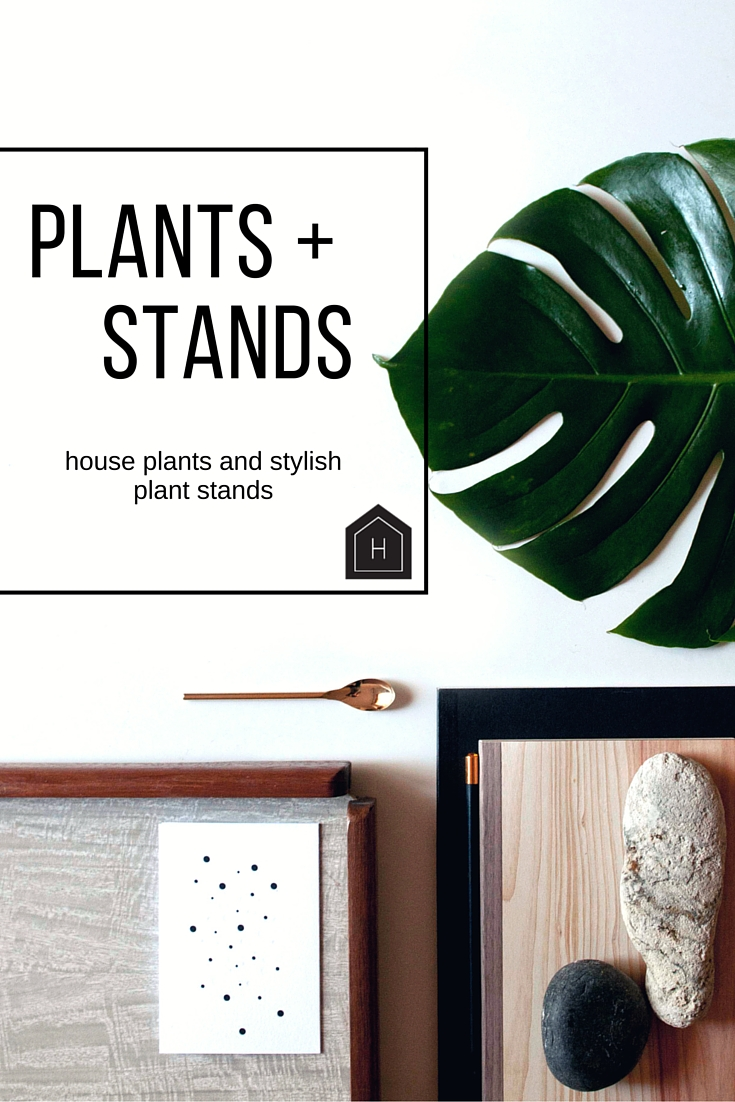 plants + stands
