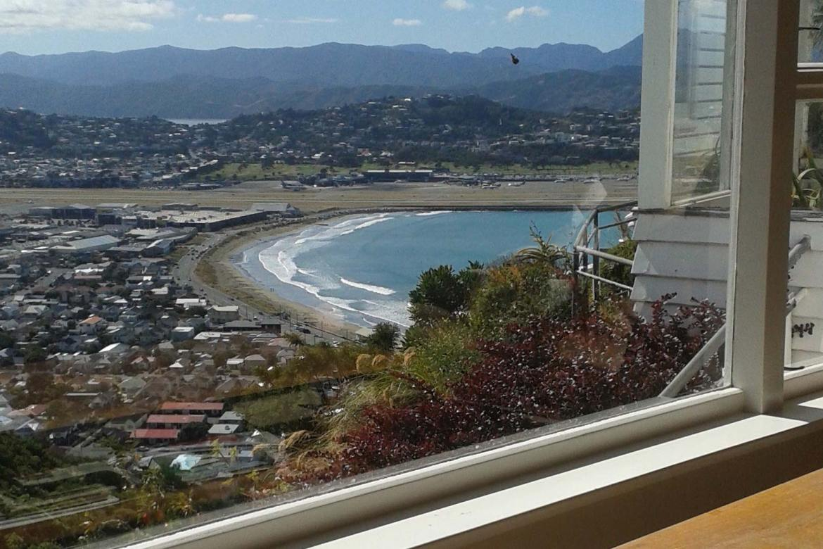 house sitting in wellington new zealand