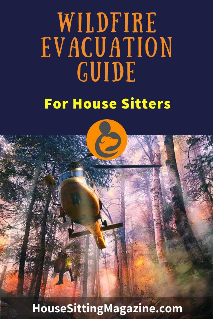 Preparing for a wildfire while house sitting - what do you need to consider for your safety, and the home and pets? #beginhousesitting #housesitting #petsitting #wildfires #trustedhousesitters