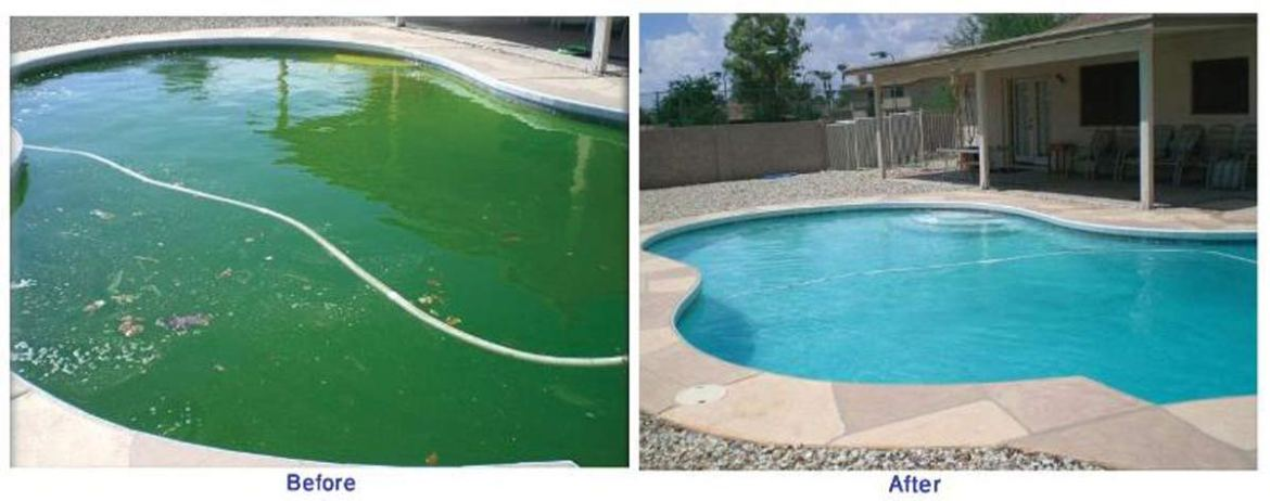 Turning pool green on a house sit
