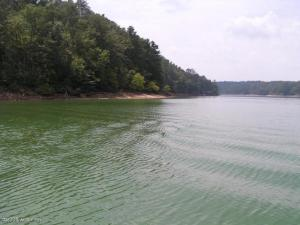 Lots for Smith Lake Homes