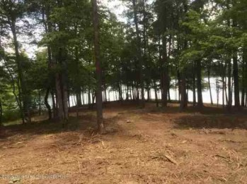 Lewis Smith Lake for Sale
