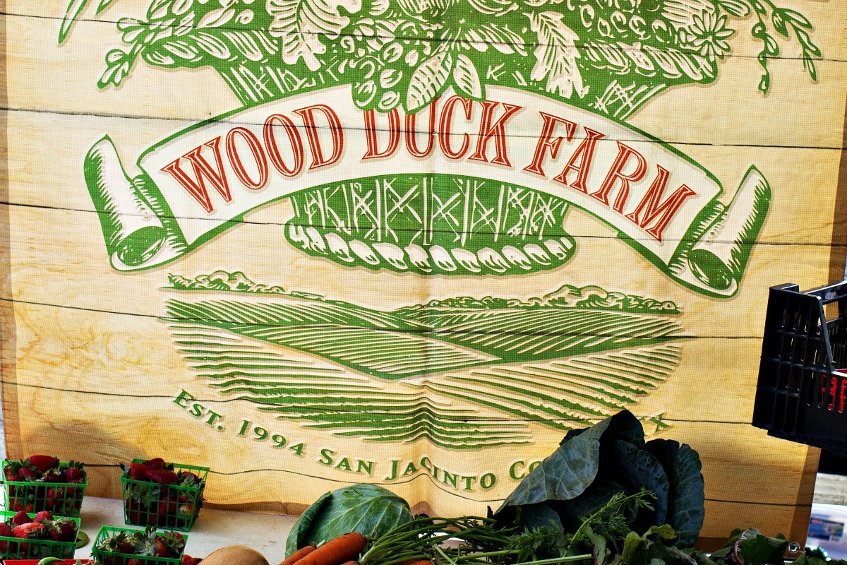 Wood Duck Farms