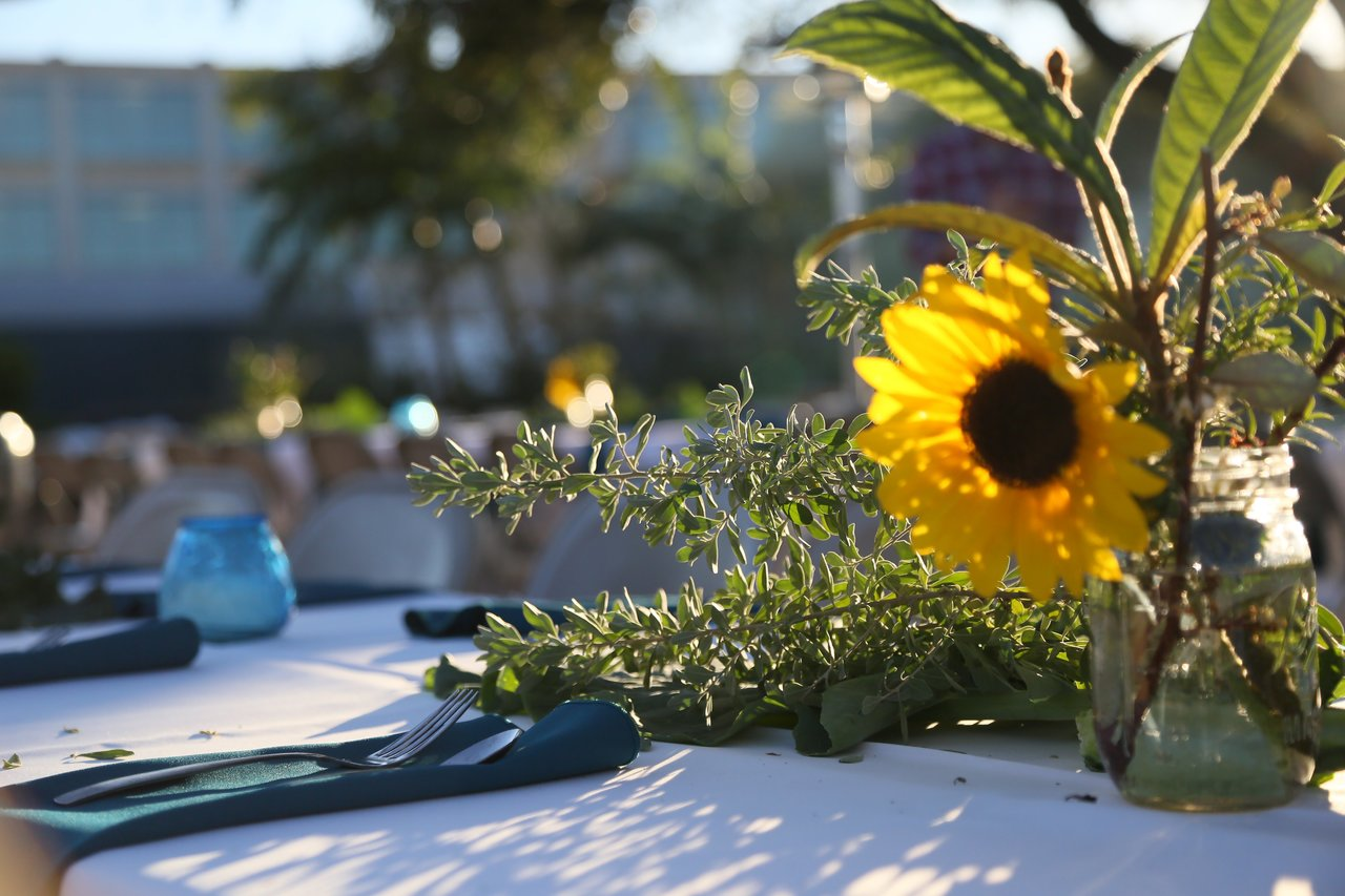 Photo of a table setting with a sunflower.