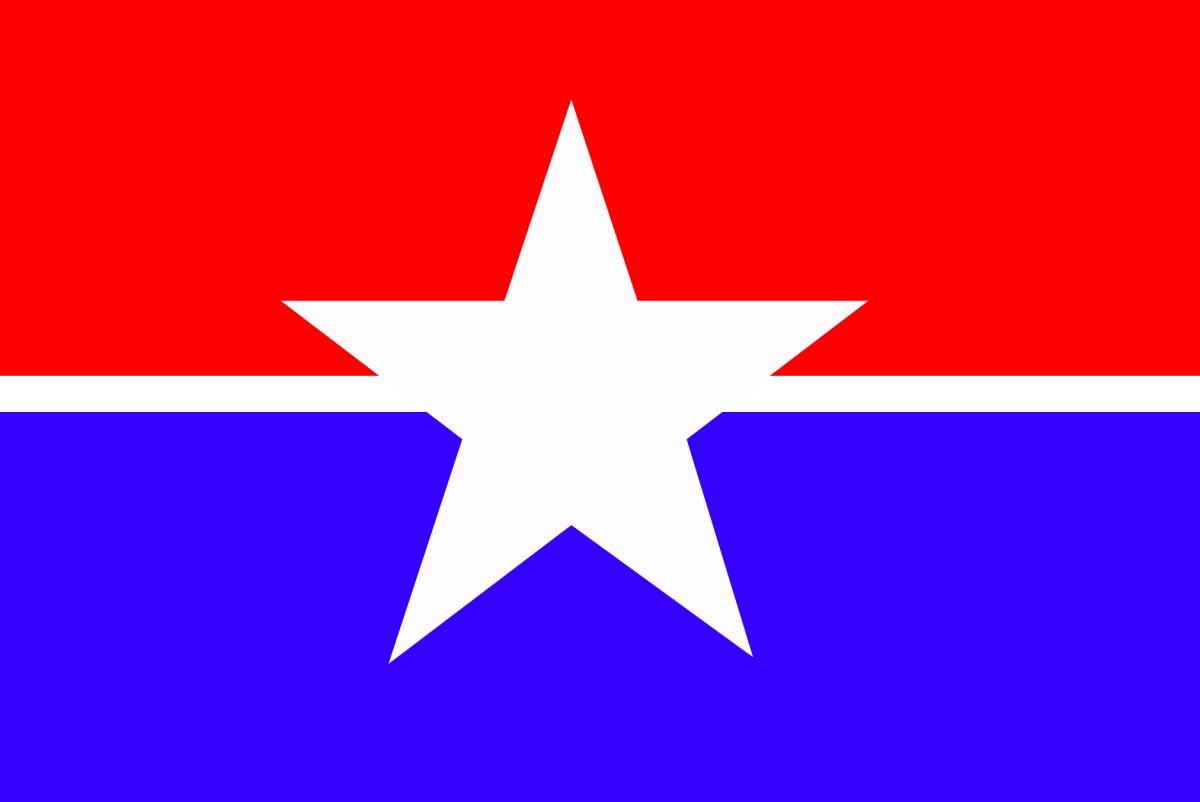 photo for Houston flag