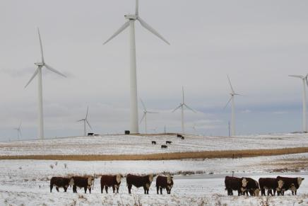 Wind Turbines V. Fossil Fuels: The Battle for Your Future