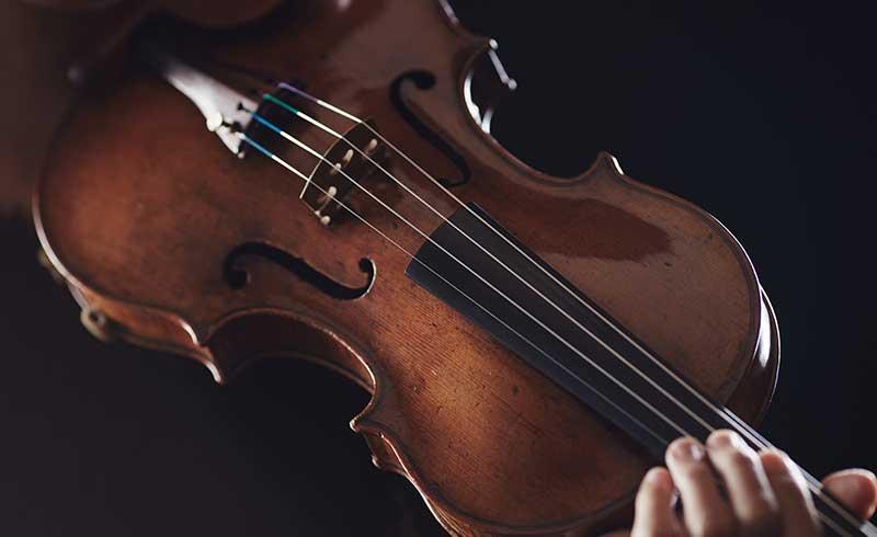 Person holding violin.