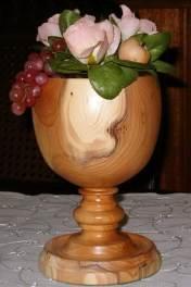 Taxus, ± 15 cm hoog