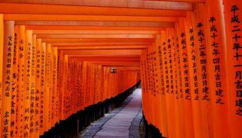 Visitando Japón durante el Año Nuevo