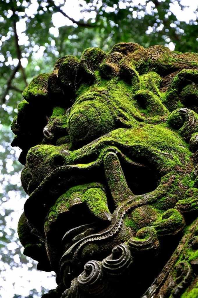 Monkey Forest en Bali