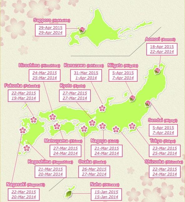 Cómo podemos saber cuando florecen los cerezos en Japón