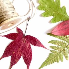 bladeren in de herfst zijn heerlijk om mee te DIY en, een van de 5 leuke dingen