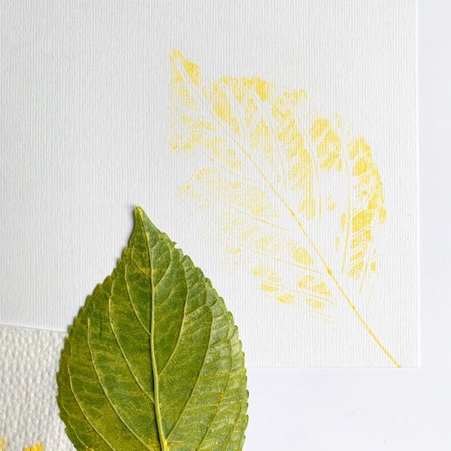 gele afdruk met inkt van een hortensiablad