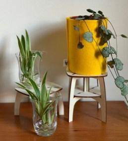 workshop plantentafeltjes: creëer thuis het ideale hoekje voor jouw stekjes