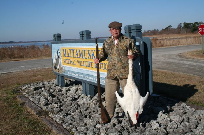 Author with swan at Lake Mattamuskeet NC