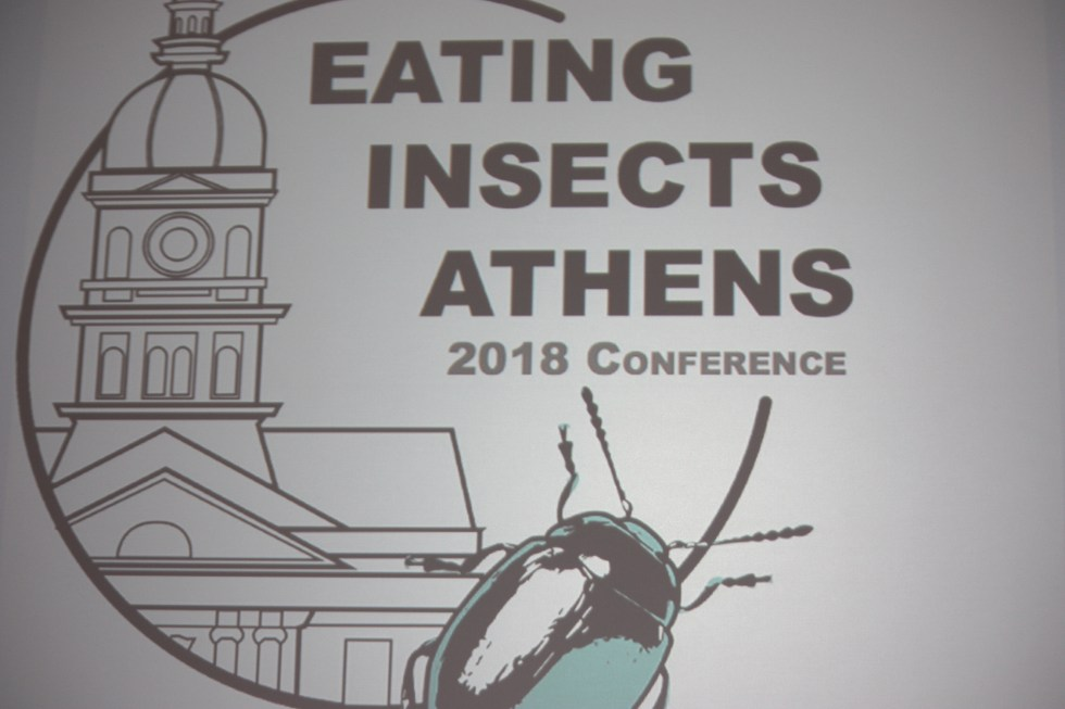Logo Eating Insects Athens