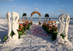 Beach Wedding themes conjure up romantic thoughts of a fairy tale wedding. The g