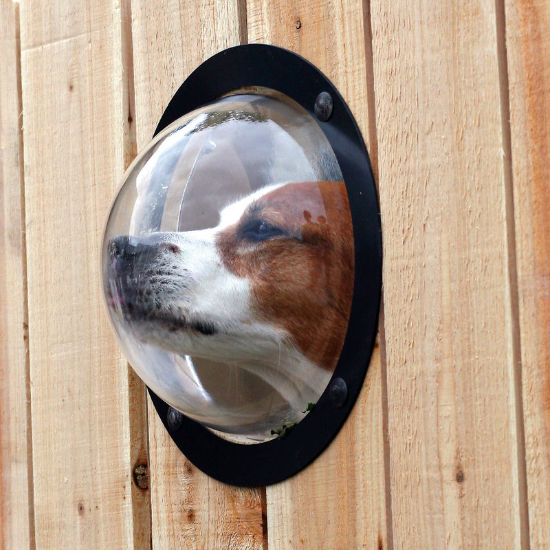 The Dog Observation Porthole – perfect for keeping an eye on the neighborhood