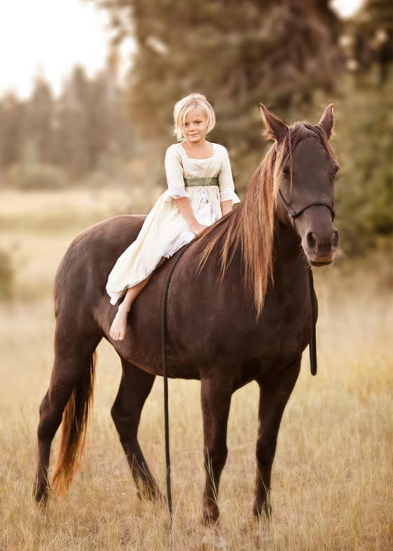 horse – girl's best friend