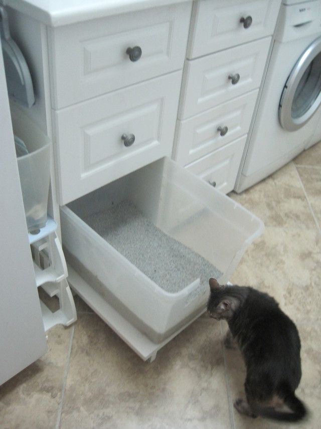 Cat Litter Box Organization
