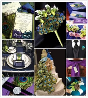 Peacock Wedding Theme Ideas