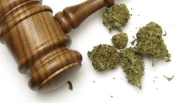 Laws To Regulate Marijuana Begin - When Did Marijuana Become Illegal in the United States?