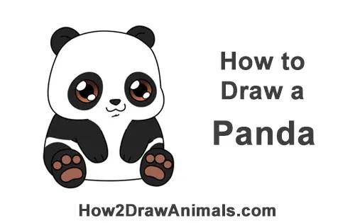 Image of: Fox How To Draw Little Baby Small Cute Cartoon Panda Bear Chibi Manga How2drawanimals How To Draw Panda Bear cartoon Video Stepbystep Pictures