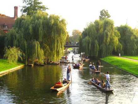 Punting on the River Cam is popular in the summer.