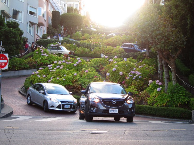 One of the most crooked streets in the world, this block on Lombard Street is a challenge for drivers and a photo stop for tourists.