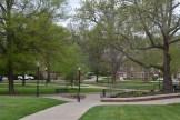 The goregous arboretum at CALU.
