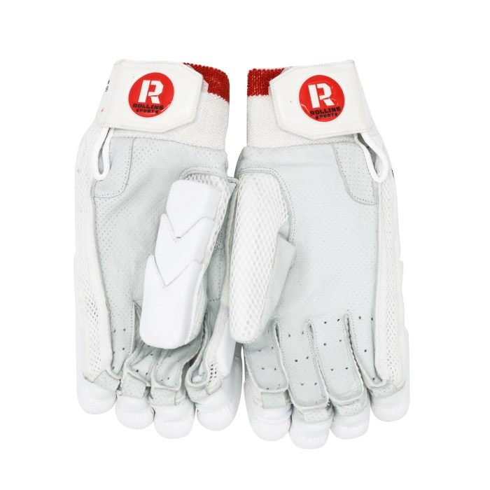 Howard Rollins Sports Invictus Batting Gloves