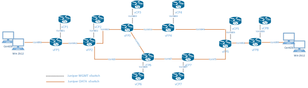Juniper vMX multicast topology