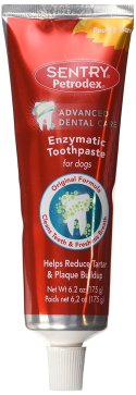 Dog teeth cleaning with Petrodex Enzymatic Toothpaste
