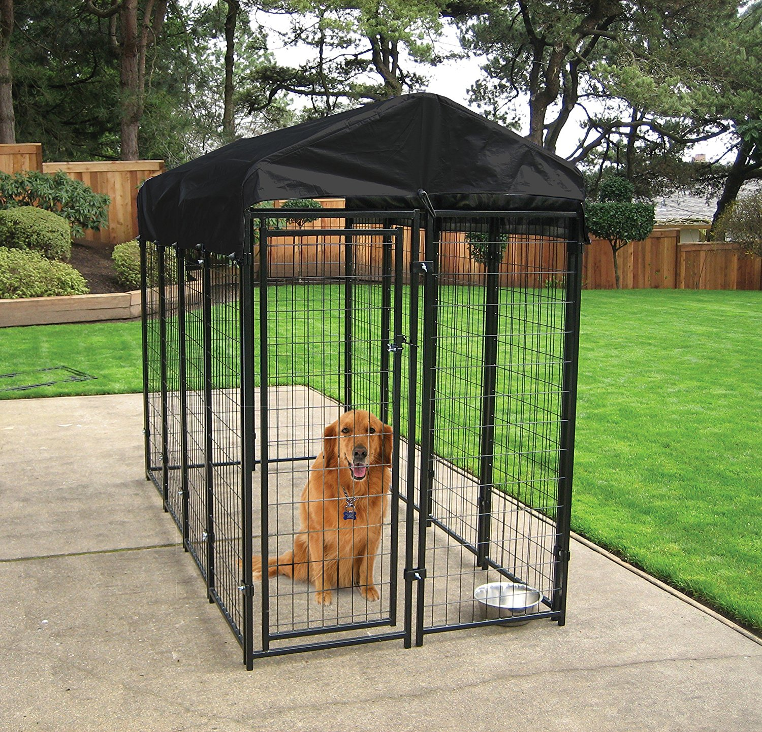 Dog Kennel For Sale Business