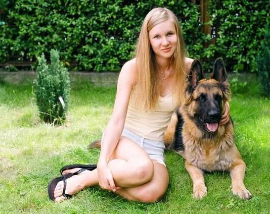 Healthy Care Of Dog Training Treats