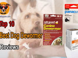 Top 10 Best Dog Dewormer Reviews