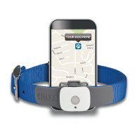 Best Dog GPS Tracker Review