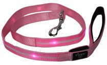 The Flashing Dog Collar Reviews