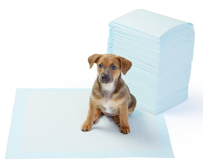 best potty training pads for dogs