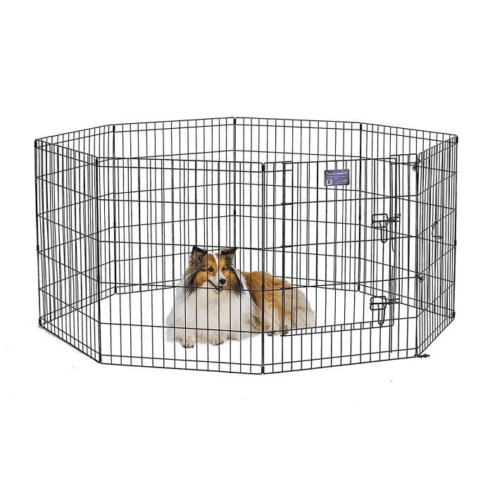 Best Outdoor Dog Kennel Reviews - Best top care with dogs