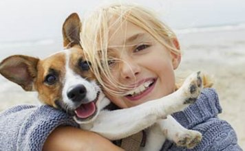 Keeping your Dog Healthy