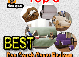 Best Dog Couch Cover Reviews
