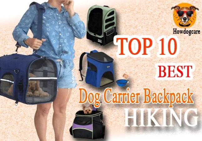 Best Dog Carrier Backpack Hiking