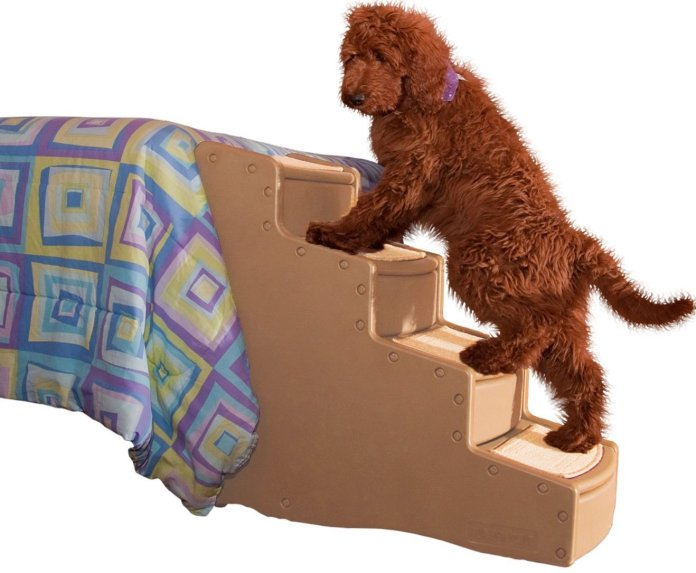 Best Dog Stairs For Bed