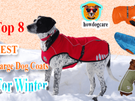 large dog coats for winter