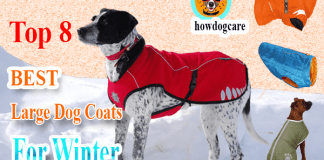 large dog coats for winter